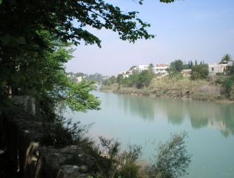 El Sindicato del Río Mijares celebra su día grande